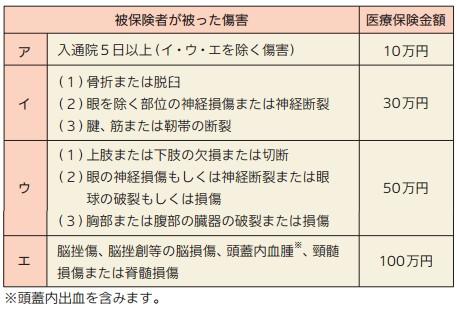 損保ジャパン日本興亜 搭乗者傷害特約(一時金払)