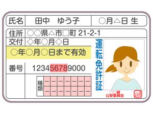 ゴールド免許割引|自動車保険